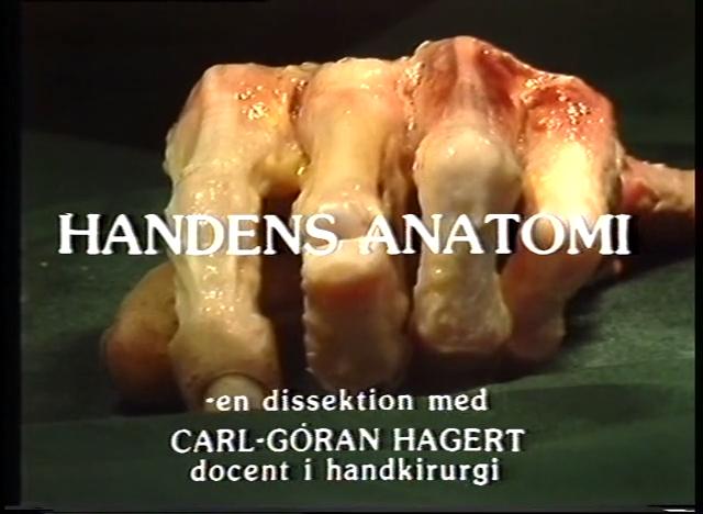 Handens Anatomi (Del 1, Senor, nerver och småmuskler)