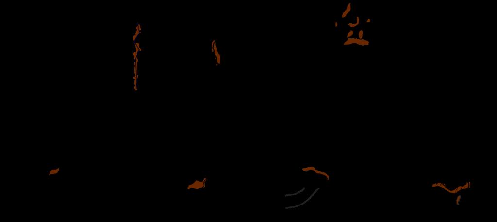 distal-falangfraktur